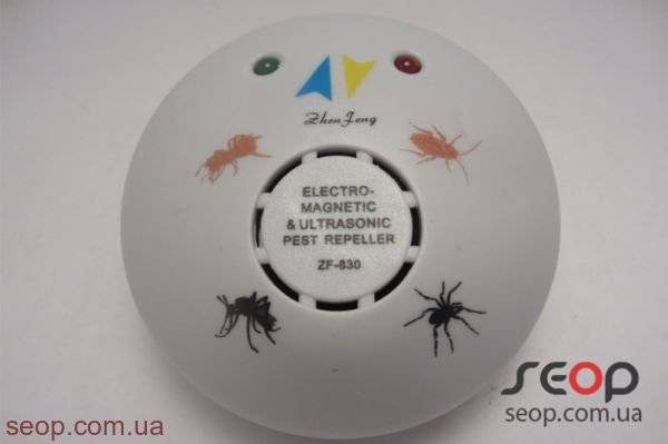 Эффективные ловушки для муравьев