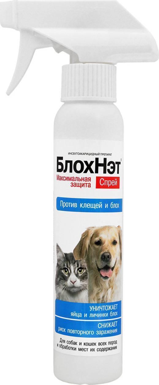 Блохнэт для собак: капли и спрей для борьбы с блохами, клещами и прочими паразитами
