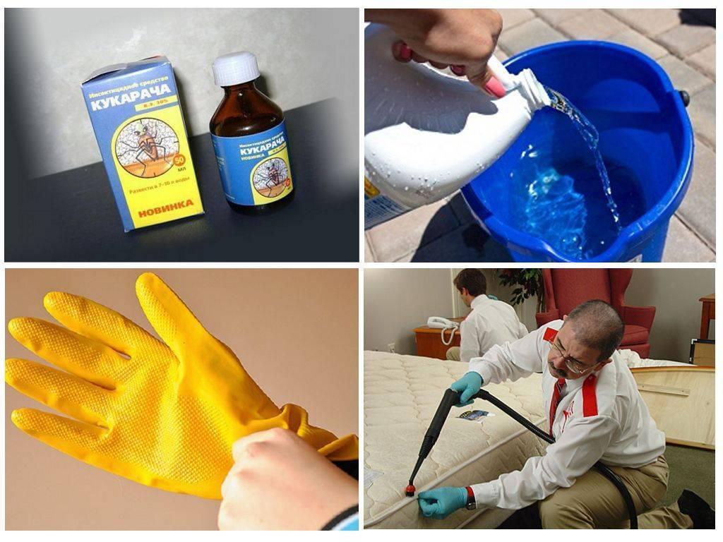 Препарат кукарача против клопов — оцениваем эффективность и особенности применения
