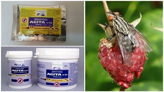 Инсектицидное средство от мух «агита»: инструкия