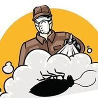 Холодный туман от тараканов поможет там, где все отказались