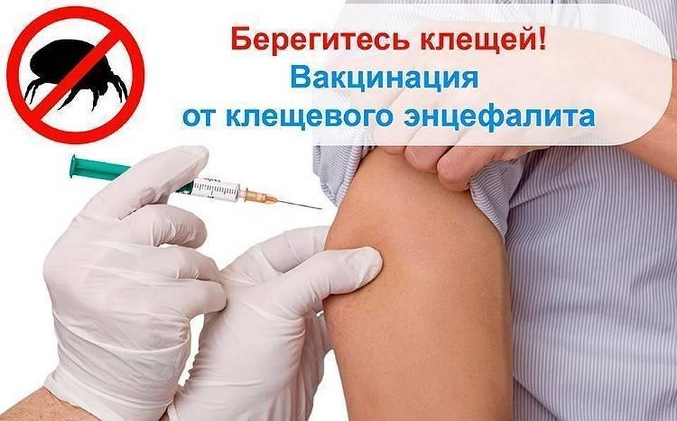 Вакцинация ребенка отклещевого энцефалита: как выбрать лучшую вакцину, составить схему прививки ипредупредить осложнения