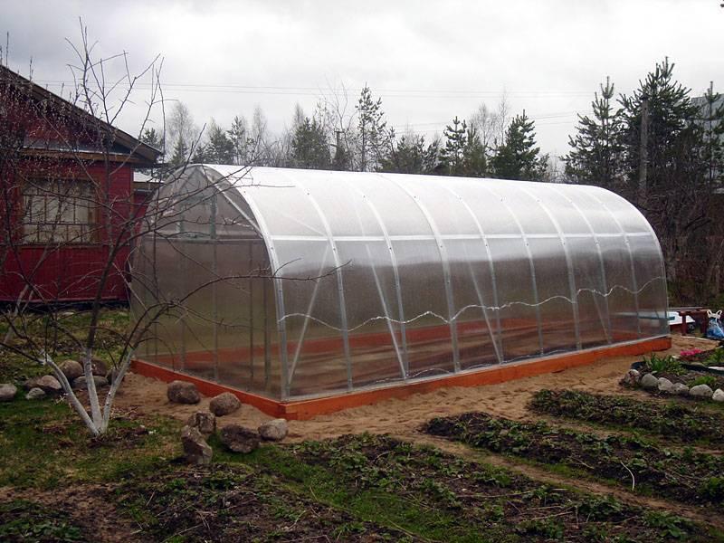 Подготовка теплицы из поликарбоната осенью к зиме