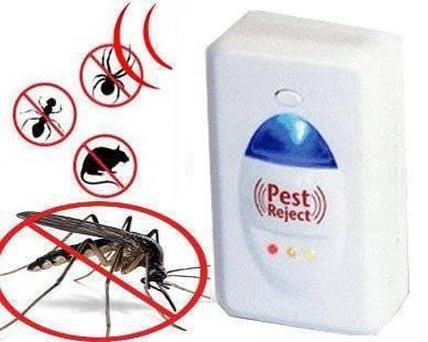 Ультразвуковые отпугиватели тараканов – эффективны ли они?