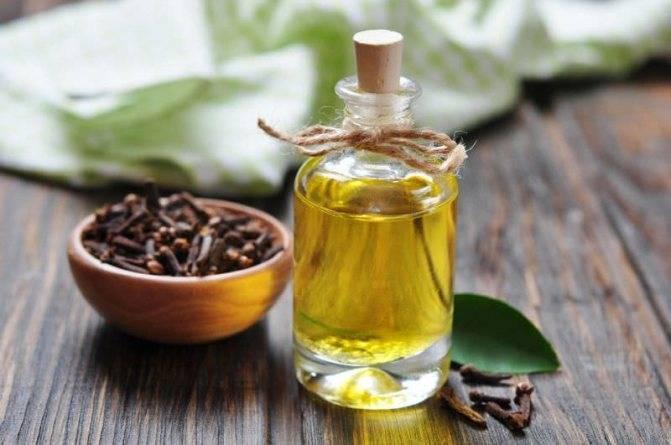 Эфирные масла против комаров: какое выбрать и как применять