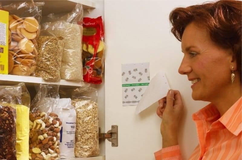 Как избавиться от пищевой моли на кухне раз и навсегда?
