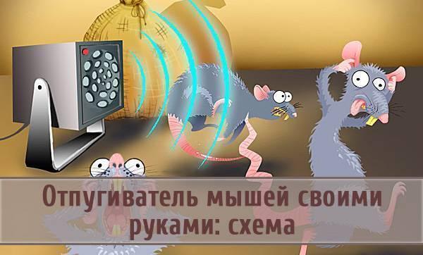Ультразвук против мышей