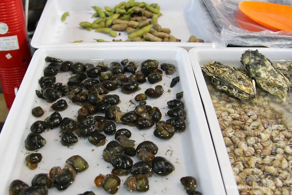 Опасные мухи. человеческая плоть для личинок - лучший деликатес. что будет, если съесть яйца или личинки мухи профилактика и меры безопасности от мух