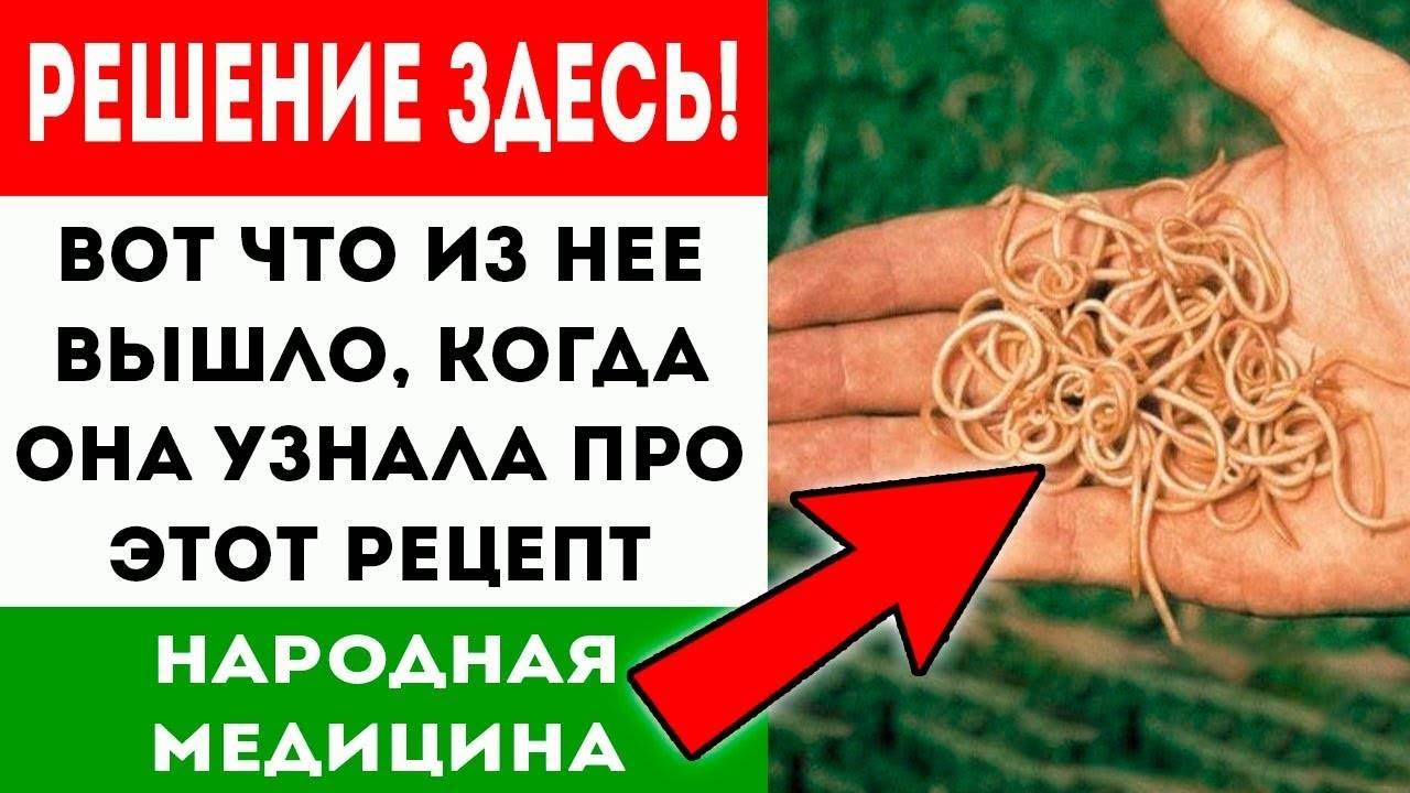Народные средства от глистов и паразитов