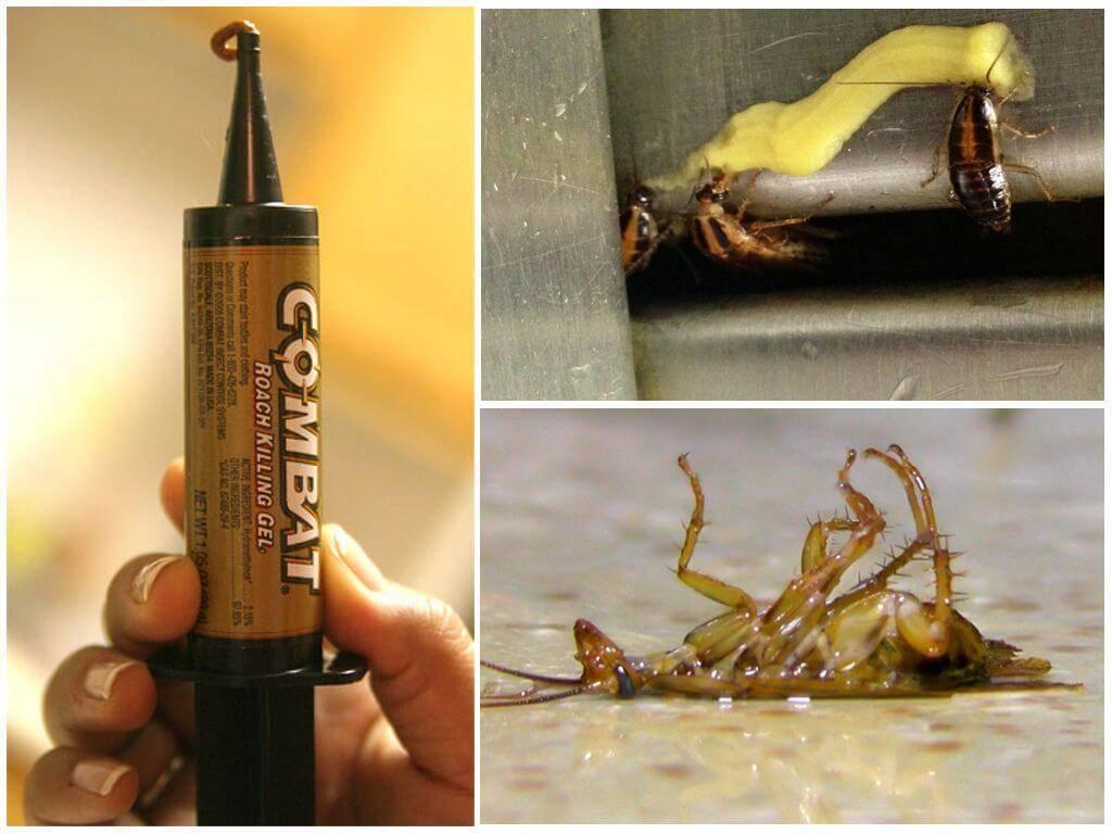Обзор и рейтинг гелей от тараканов