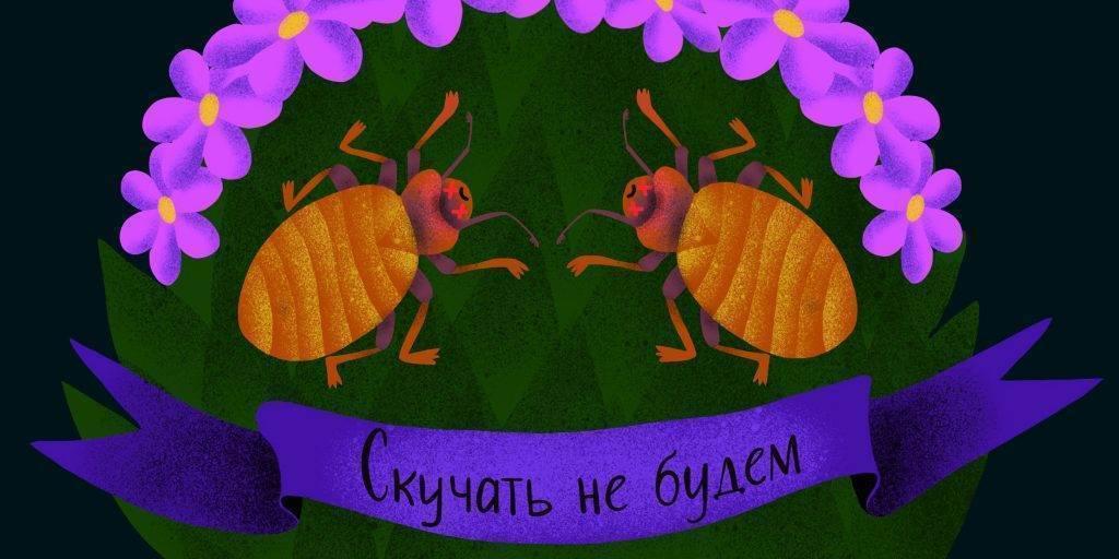 Faq: частые вопросы и ответы на них. постельные клопы, тараканы, клещи, крысы и мыши