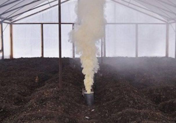 Обработка теплицы осенью от вредителей и болезней