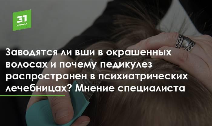 Могут ли появиться вши на окрашенных волосах: методы избавления от паразитов