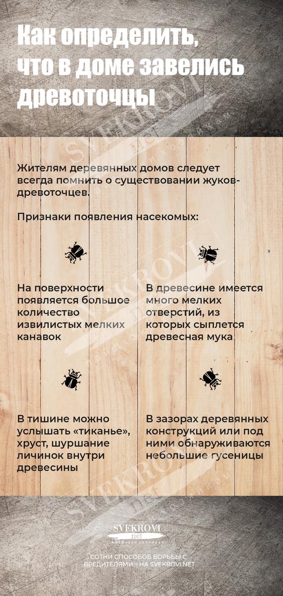 Узнать и победить жука древоточца