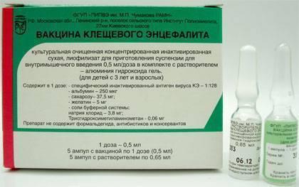 Прививка от клещевого энцефалита: схема вакцинации, где и когда ставить