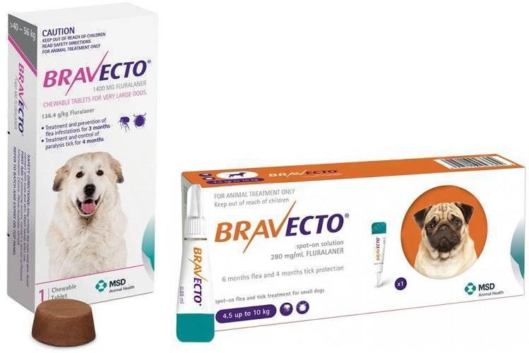 """Реальные отзывы владельцев собак и ветеринаров о таблетке от клещей """"бравекто"""""""