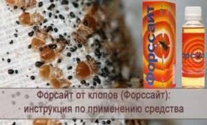 Форсайт от тараканов как использовать