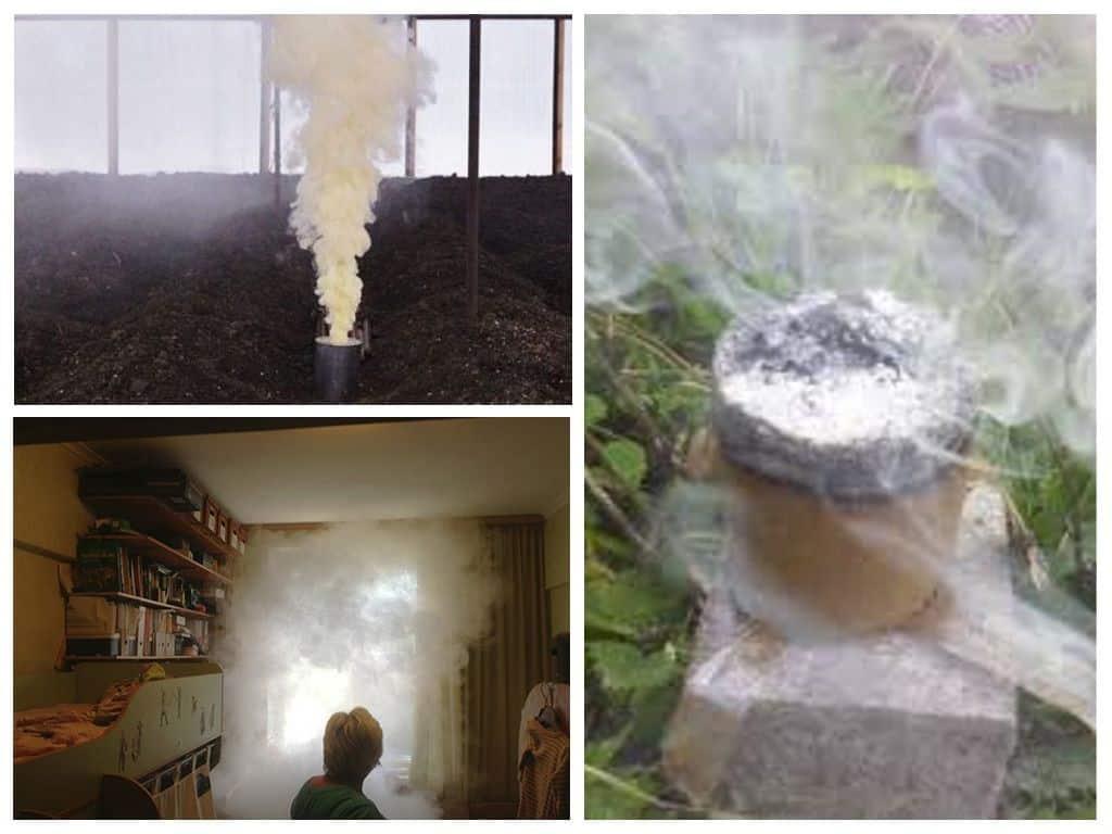 Советы по применению дымовой шашки от клопов