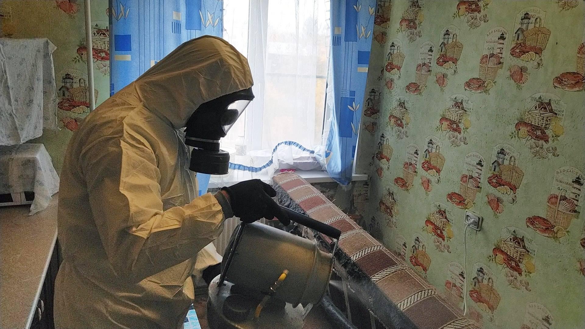 Как правильно сделать обработку и дезинфекцию для уничтожения тараканов в квартире