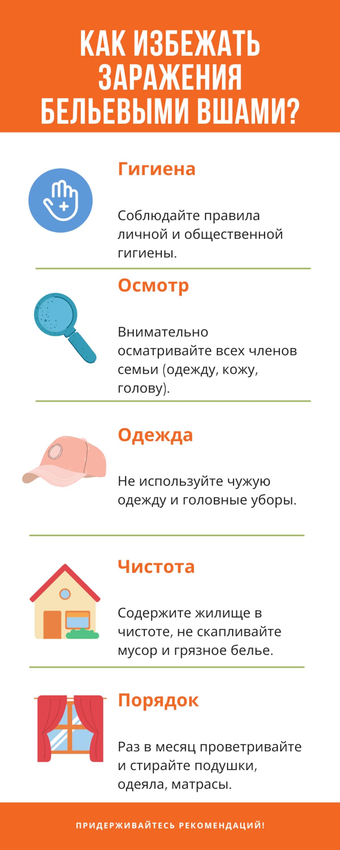Бельевые вши в доме — как от них избавиться