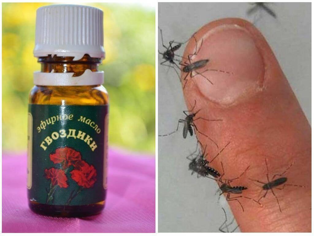 Как применять масло гвоздики от комаров