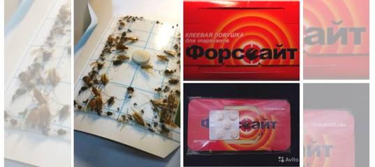 Средства форссайт от тараканов