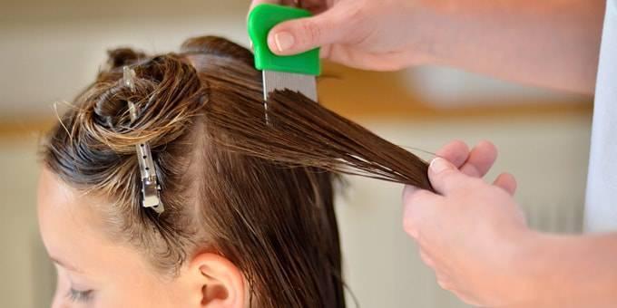 Чем и как вычесать гнид в домашних условиях после обработки волос?