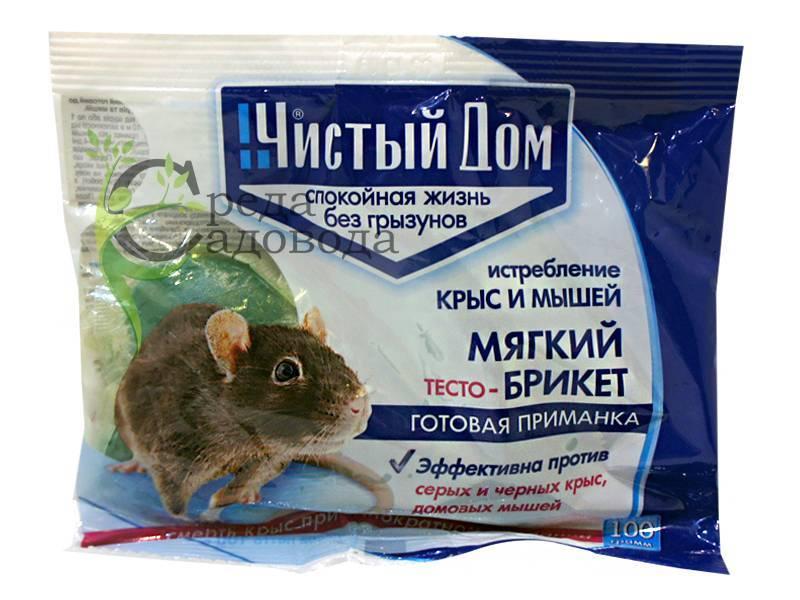 Как избавиться от мышей в частном доме, как бороться с мышами в частном доме: средство от мышей в доме, чего боятся мыши в доме народные средства