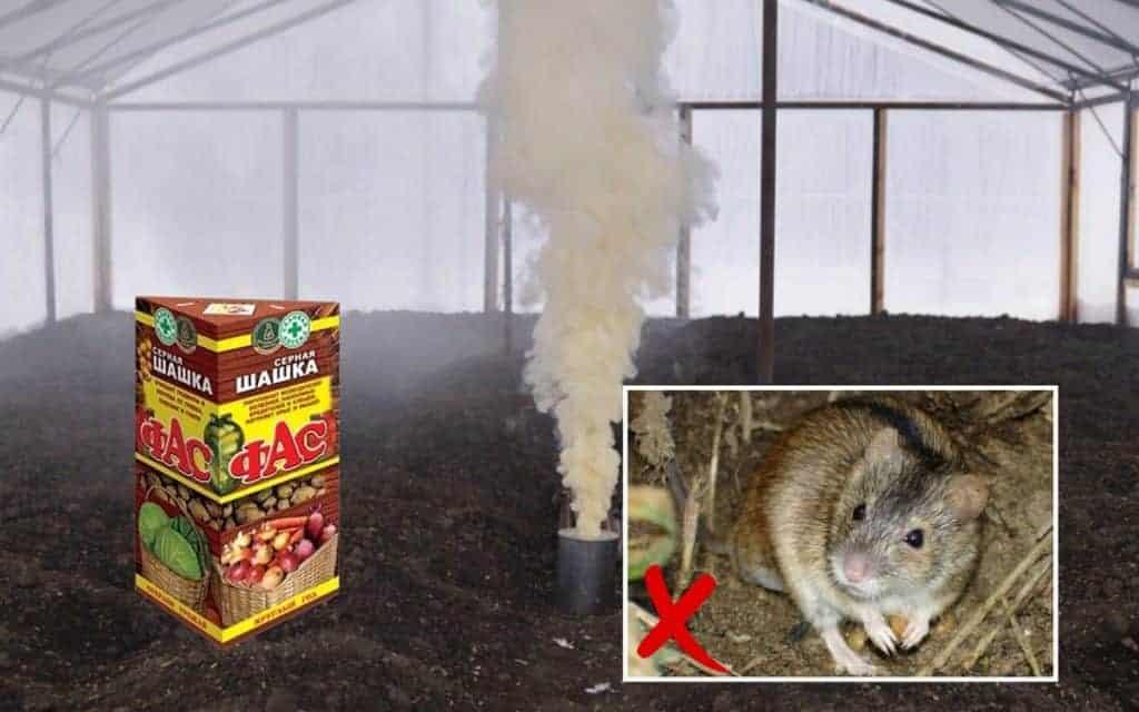 Как применяют дымовые шашки от тараканов?