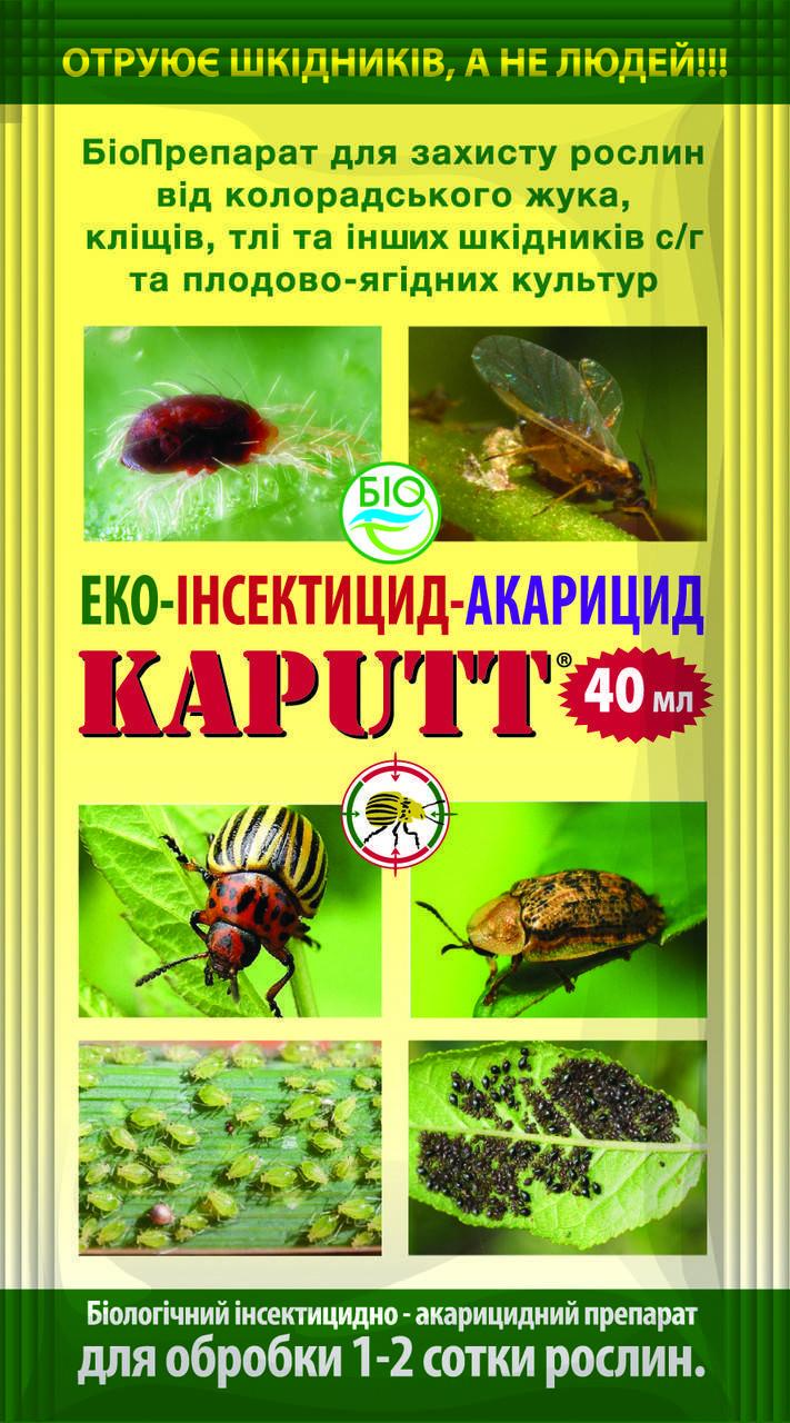 Лучшие препараты борьбы с колорадским жуком (часть 2)