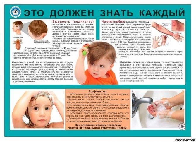 Профилактика педикулёза у детей и взрослых