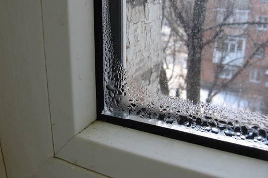 Почему появляется плесень на окнах (раме, откосах), и как с ней бороться?