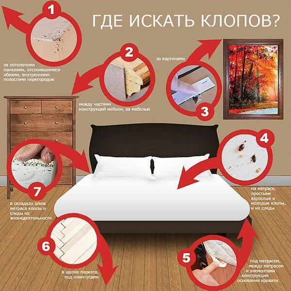 Как переносятся постельные клопы