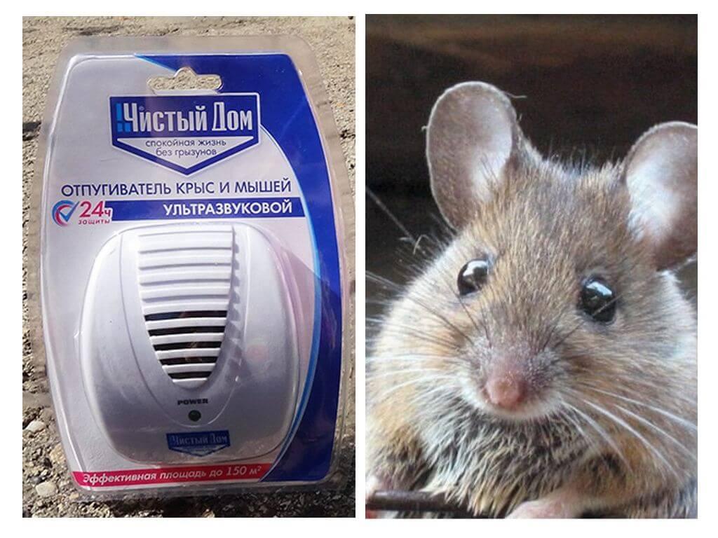 Ультразвуковой отпугиватель крыс и мышей
