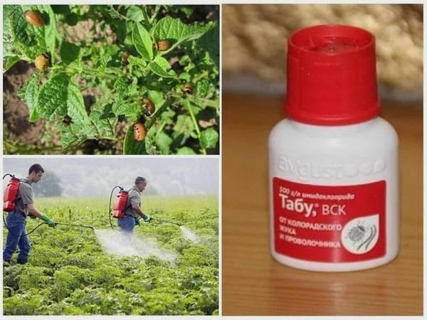 Инструкция по применению препарата табу для обработки от колорадского жука