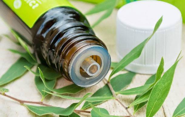 Какие натуральные масла лучше всего помогают избавиться от вшей и гнид