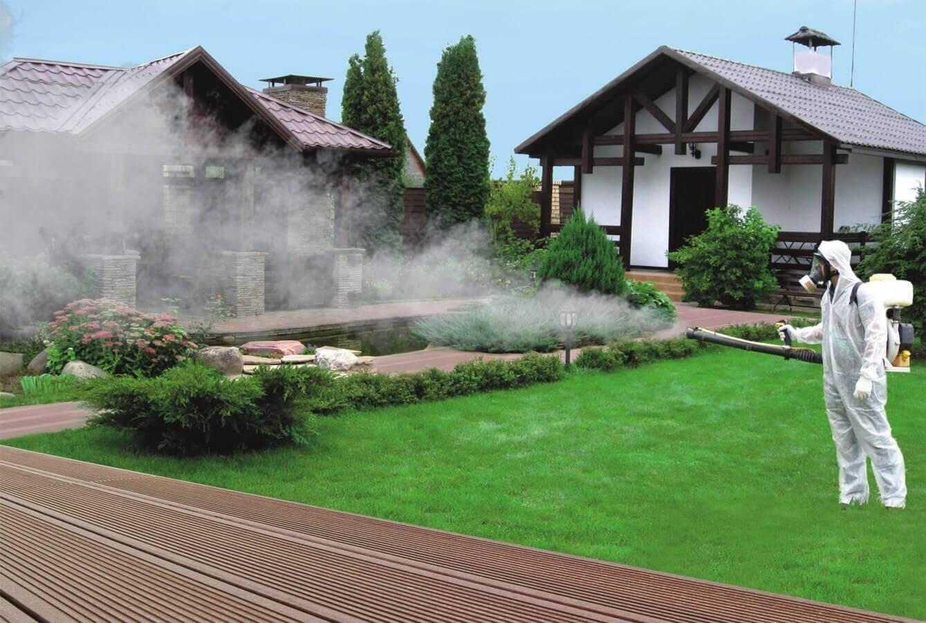 Борьба с комарами на даче – эффективные методы