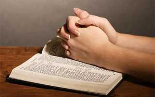 Молитвы и заговоры для избавления от клопов и тараканов