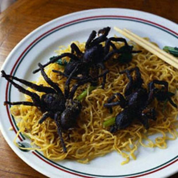 10 самых страшных и противных насекомых мира (фото)