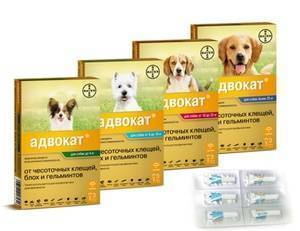 Средство адвантикс от блох для собак