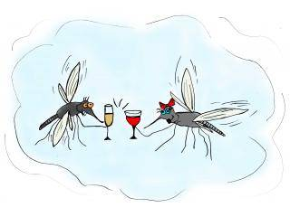 Какую пользу и вред приносят мухи и зачем они нужны в природе?