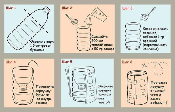 Как избавиться от мошек в квартире: 3 самых эффективных способа