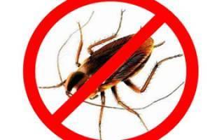 Инструкция по применению карбофоса от тараканов с ценой и отзывами