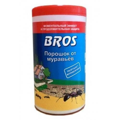 Как избавиться от муравьев при помощи борной кислоты дома и на даче
