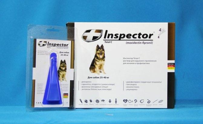 Капли для собак от клещей инспектор: инструкция, отзывы