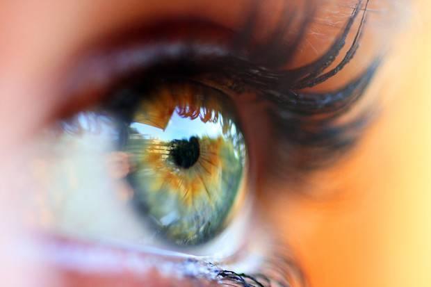 Укус мошки в глаз: первая помощь, лечение
