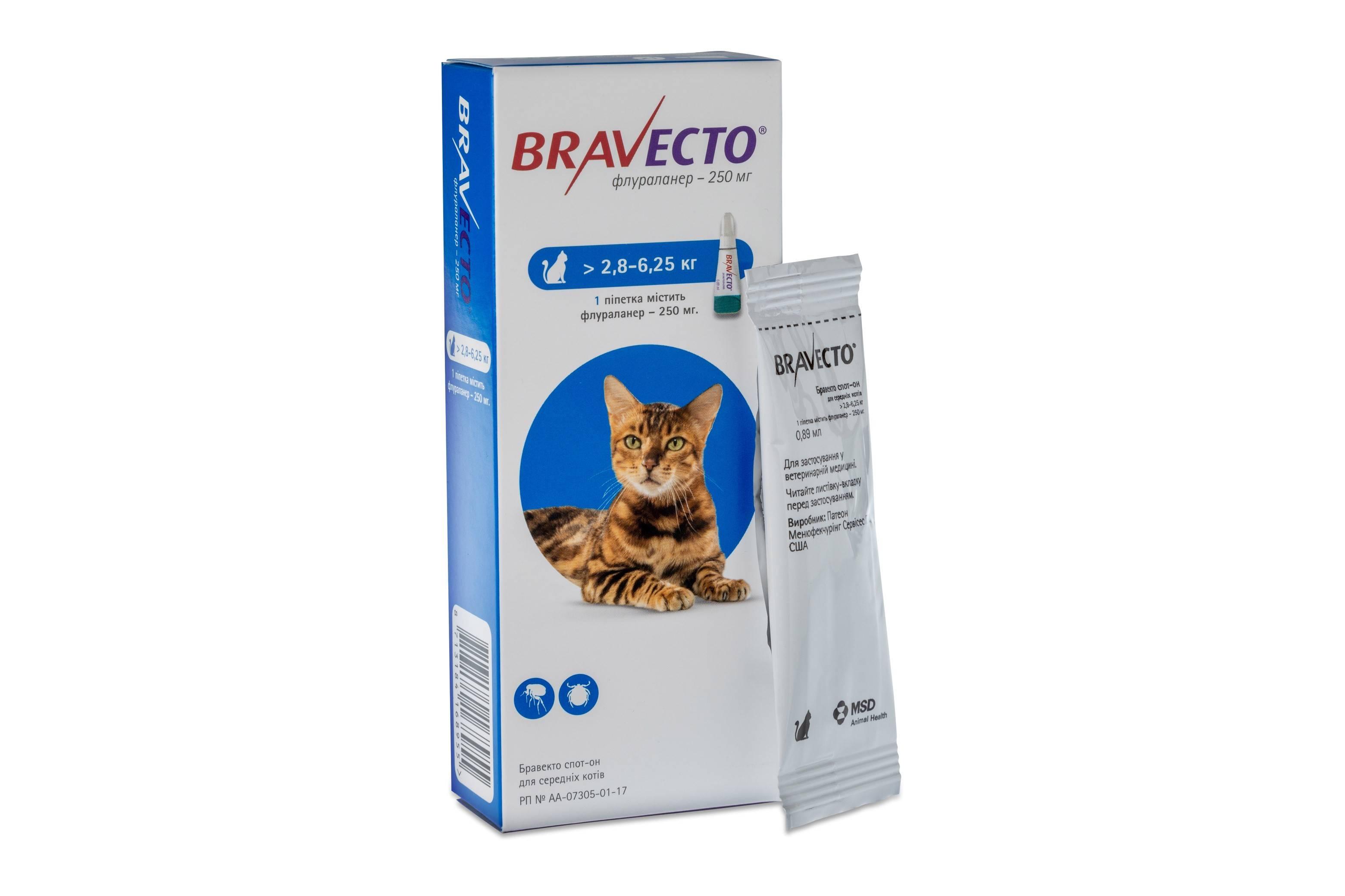 Лучшие препараты от блох для кошек. таблетки от блох для собак и кошек.