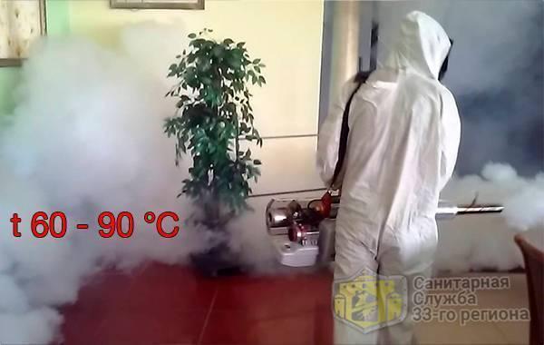 Уничтожение клопов холодным туманом и насколько эффективен горячий туман?