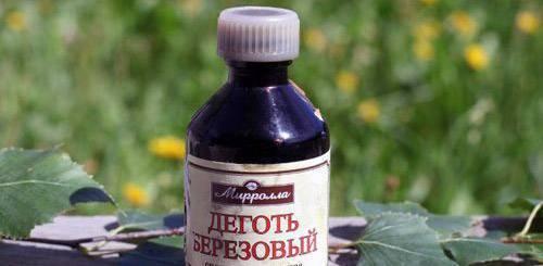 Химические средства от тли – обзор лучших предложений современного рынка