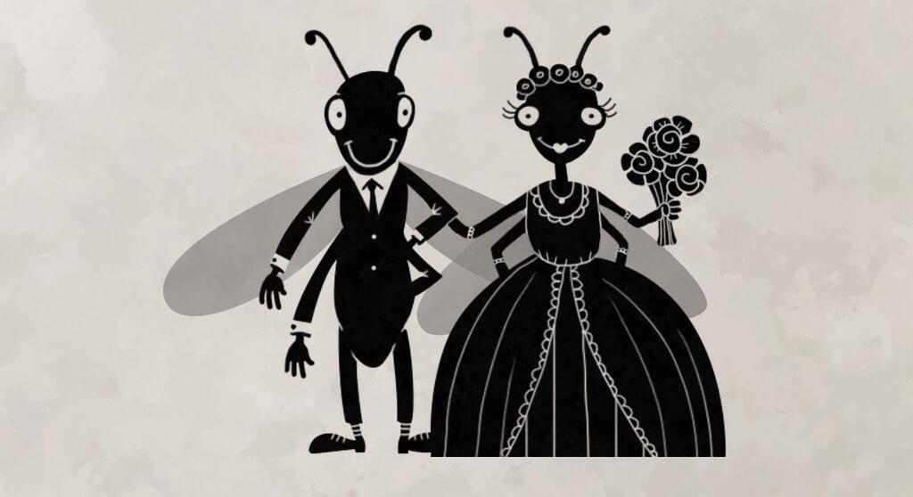 Как избавиться от муравьев в доме и квартире своими силами?